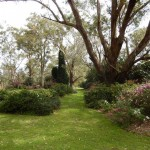 hunter region botanical gardens