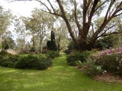 hunter region botanical gardens