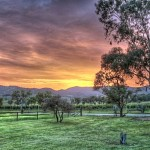 Pokolbin_sunset_HDR_2